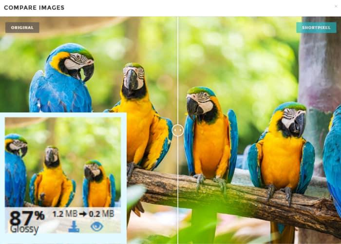 shortpixel glossy image compression comparison